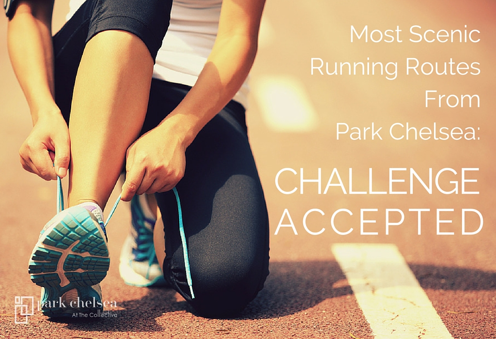 Park Chelsea Running Routes | The Most Scenic Running Routes in Southeast DC