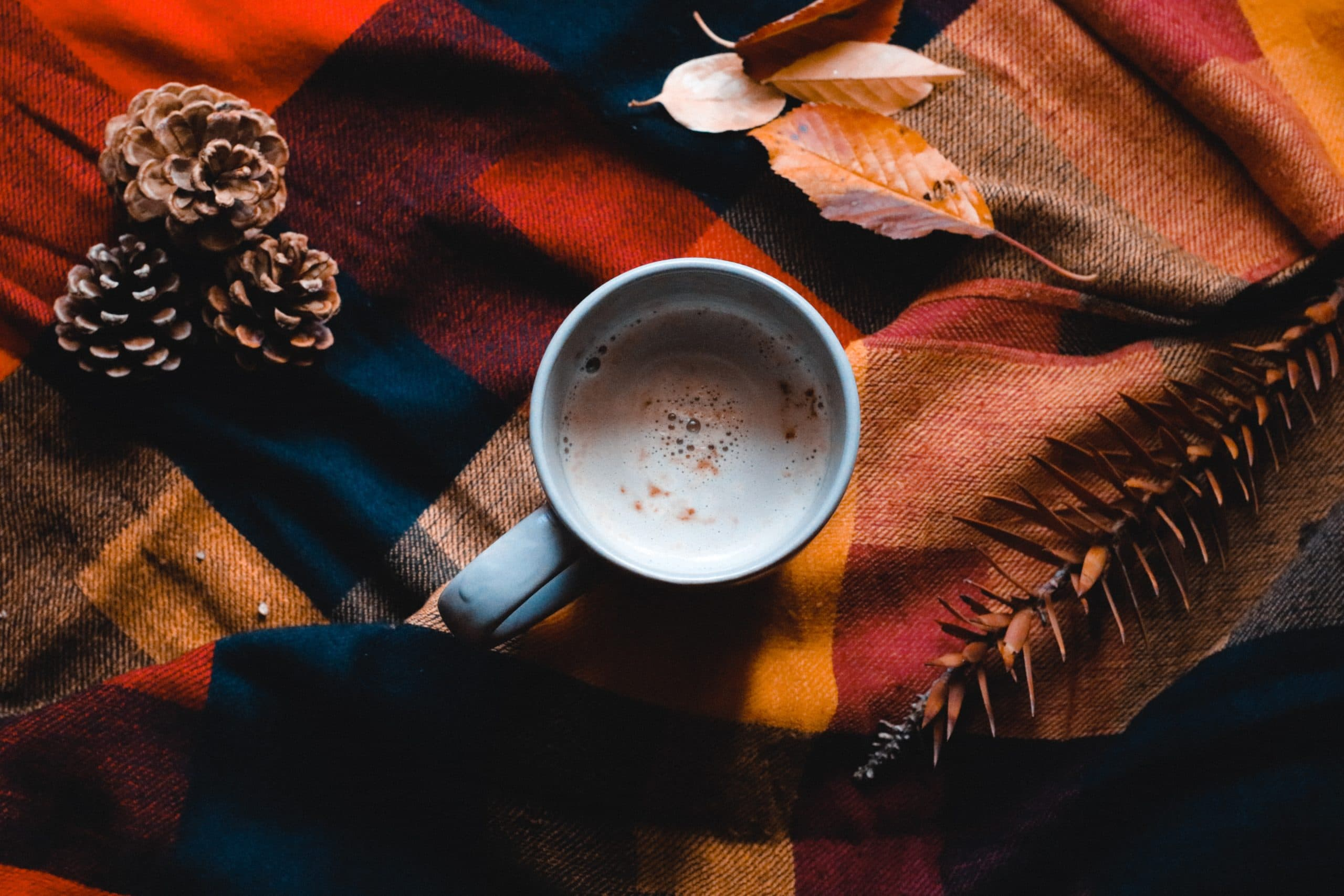 fall-drink-recipes-the-collective-dc